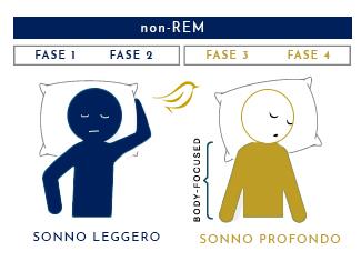 le 4 fasi non-rem di un ciclo di sonno